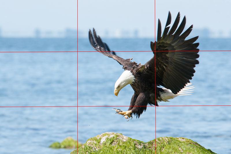 قانون یک سوم در مراتب تصویرسازی-پرزنتا